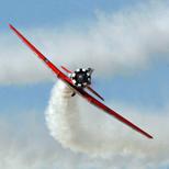 Aerobatic System